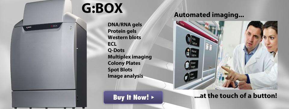 Gbox2